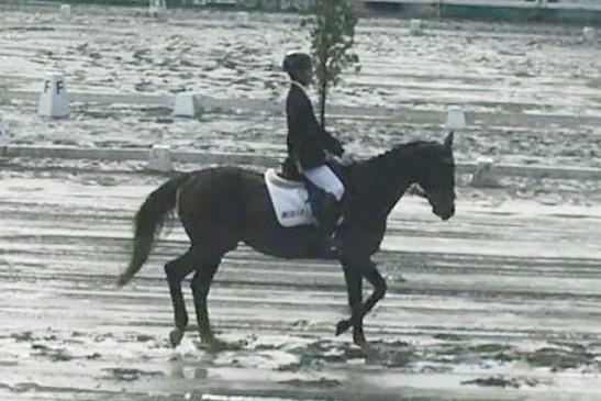 総合馬術個人参加の田中 一希とエキゾーストノート号(馬場馬 術)